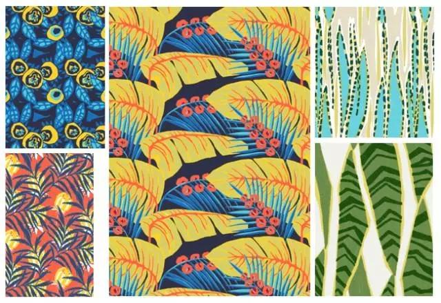 植物图案的创意表现