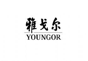 雅戈尔服装控股有限公司