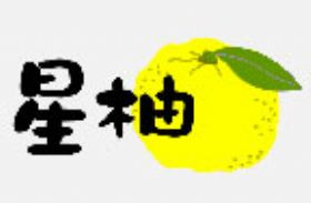 杭州星柚服饰有限公司