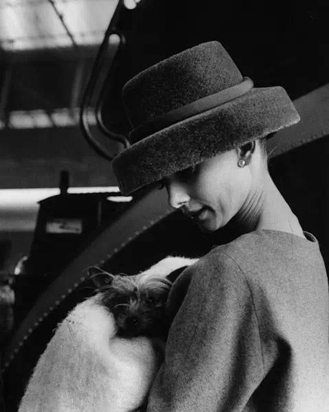 赫本喜欢各种各样的帽子,尤其是帽檐偏宽的,可以把她的脸称的娇小可爱