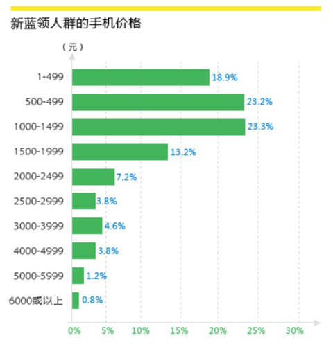 2013年职场新蓝领薪酬报告